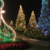 Blog: Christmas Wonderland 2017, Gardens By the Bay