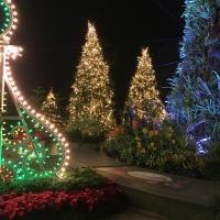 'Christmas Wonderland'